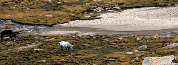 Beautiful Landscape in Ladakh