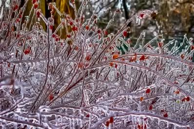 Ice Contours