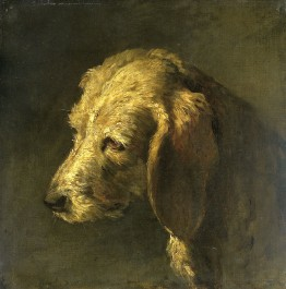 Head of a Dog, c. 1820 - c. 1845