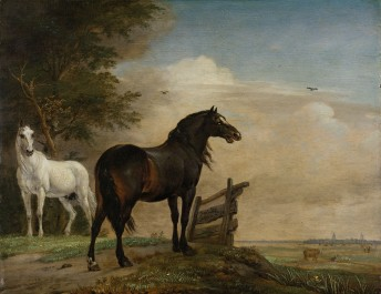 Two Horses in a Meadow near a Gate, 1649